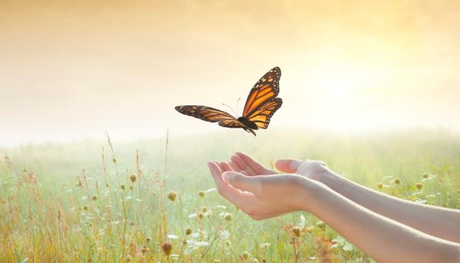 Girl releasing a butterfly