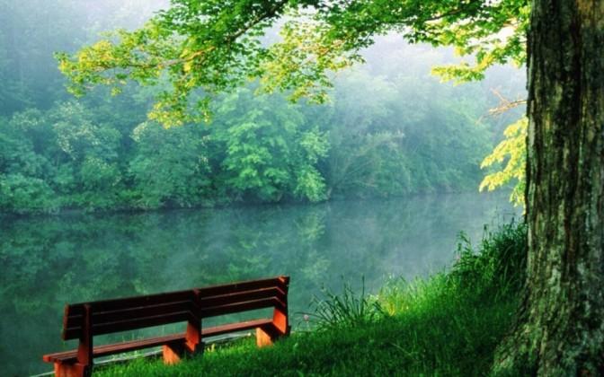 beauty-of-nature-random-1024x640