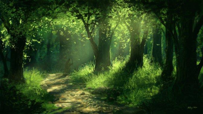 forest-wanderer